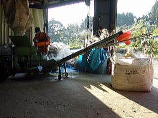 竹パウダー 自社製造