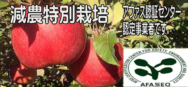 特別栽培りんご。福島のりんご。減農特別栽培。農薬を慣行栽培の半分以下で栽培しております。