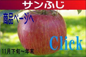 fuji1234